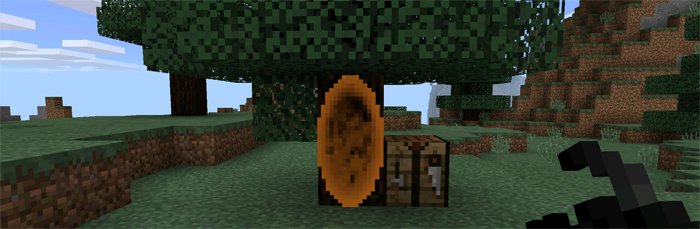 portal12