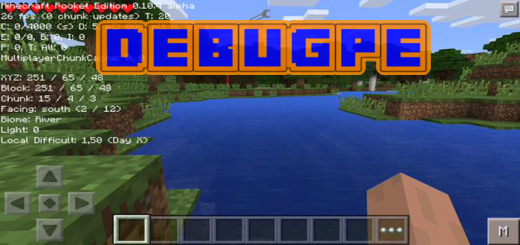 DebugPE