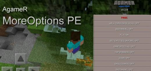 AgameR MoreOptions PE