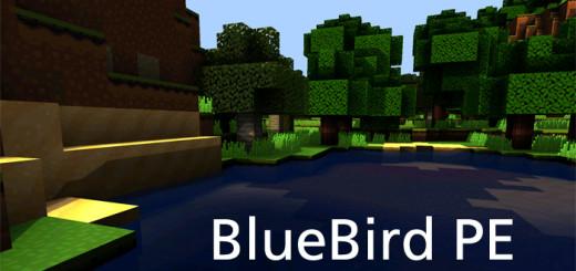 bluebirdfea