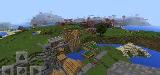 thisbattlestartedtnt: Village & Mushroom Biome