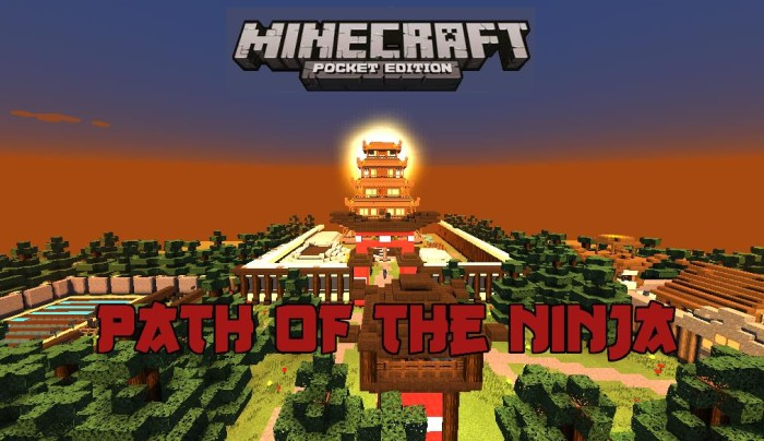 The Path Of The Ninja Adventure Survival Parkour