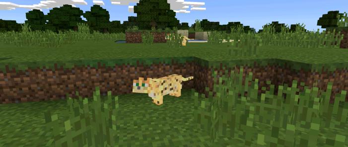 Ocelots Mod Minecraft Pe Mods Addons