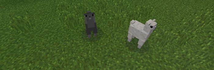 Pocket Creatures Mod Minecraft Pe Mods Addons