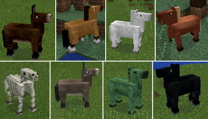 cavalos-mod-2