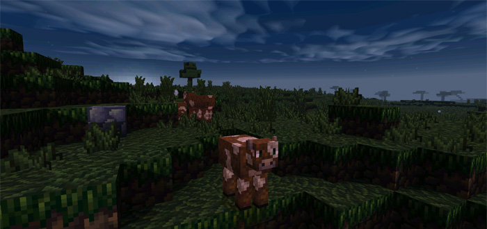 plunders-pixelcraft-shaders-5