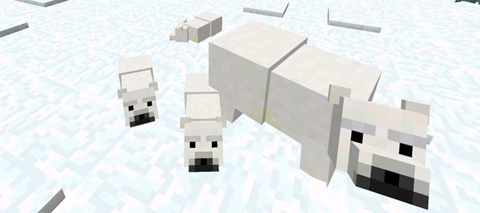 polar-bear-5