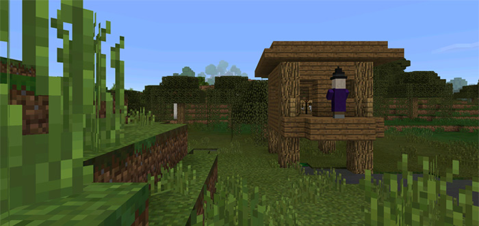 witch-hut-at-spawn-3