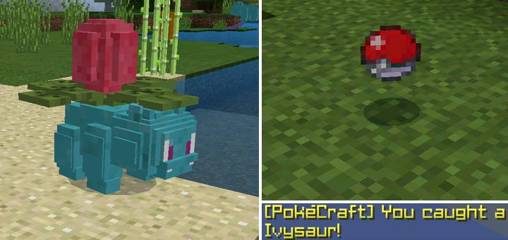 pokecraft-2-2