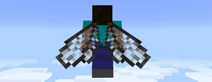 custom-elytra-wings-2