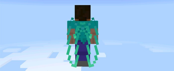 custom-elytra-wings-3
