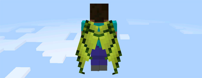custom-elytra-wings-5
