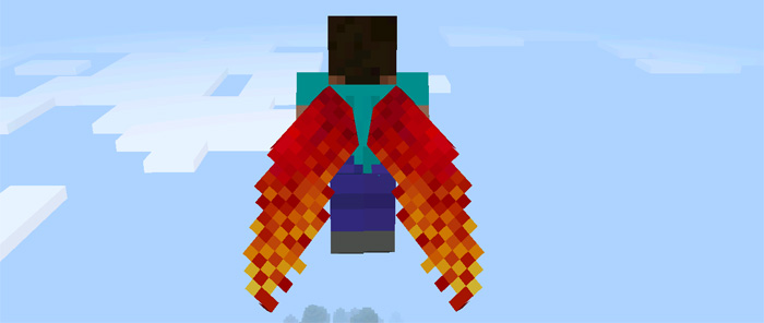 custom-elytra-wings-6