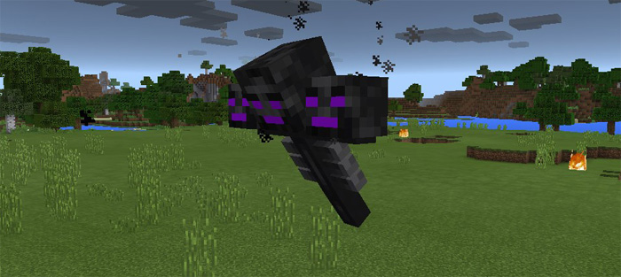 ender-wither-2