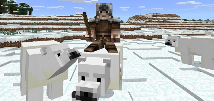 polar-bear-add-on-2