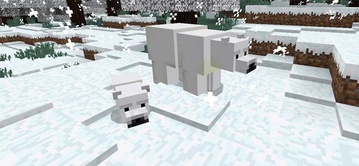polar-bear-add-on-5