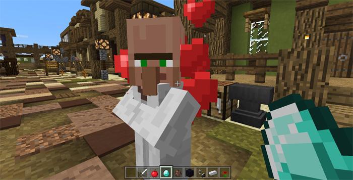 villager-companion-2