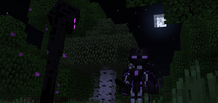 you-are-enderman-2