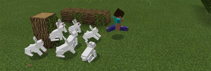 killer-bunny-2
