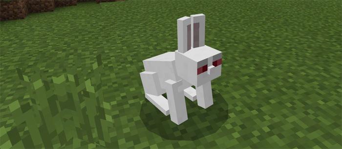killer-bunny-4