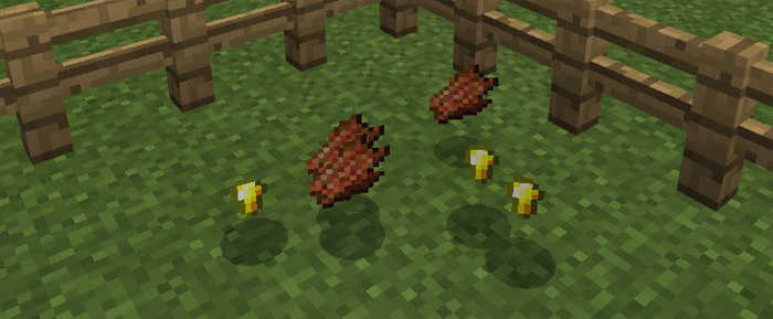 The NetherCaster Addon | Minecraft PE Mods & Addons
