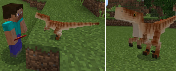 how to grow small meat in minecraft digimobs