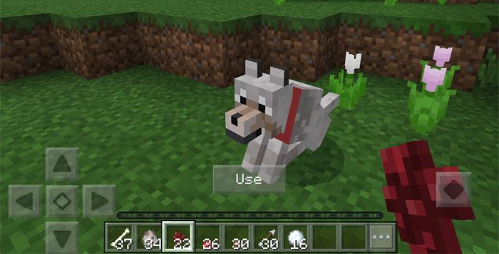 My Wolf Addon Minecraft PE Mods Addons - Skins para minecraft pe wolf