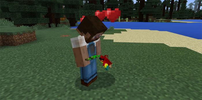 Parrot Addon (Concept)   Minecraft PE Mods & Addons