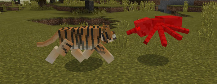 Tiger Add-on | Minecraft PE Mods & Addons