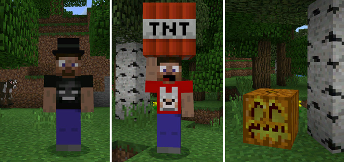 3D Models Skin Pack (Beta Only) | Minecraft Skin Packs