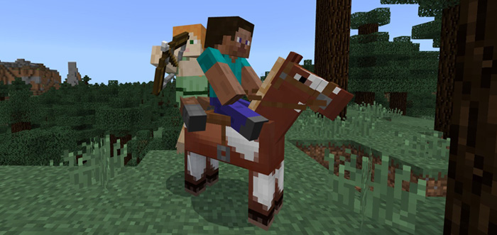2 Player Horse Riding Addon Minecraft Pe Mods Addons