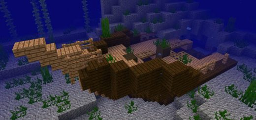 1848996952: Coral Reef, Shipwreck & Buried Treasure Seed (Beta Only)