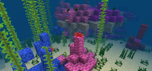 -560637684: Coral Reef Near Spawn Seed (Beta Only)