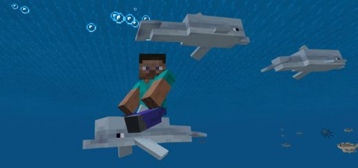 Controllable Rideable Dolphins Add-on