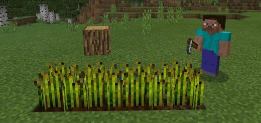 Minecraft Block Heads Addon