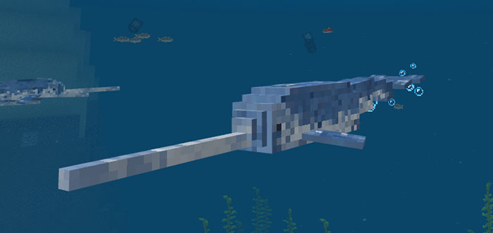 narwhal addon minecraft pe mods addons