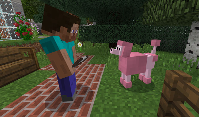 how many dogs can you have in minecraft