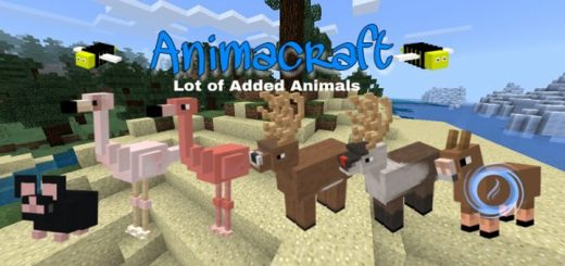 AnimaCraft Addon