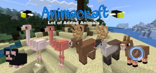 Animacraft Addons