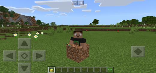 Minecraft Block Morphs Addon
