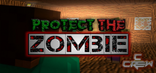 Protect The Zombie [LAN Party Game]
