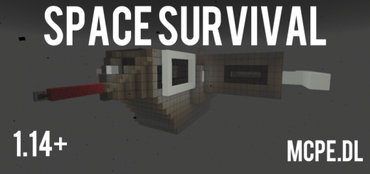 Space Survival