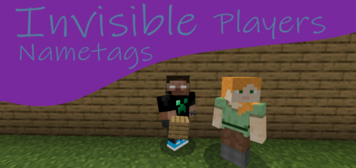 Invisible Players Nametags
