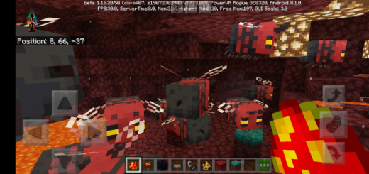 Nether Bees