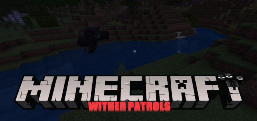 Wither Patrols