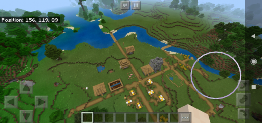 Jungle Biome with Small Village (Seed)