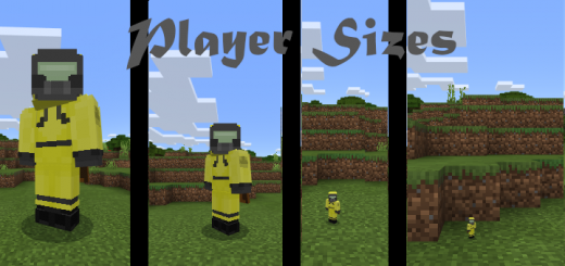Player Sizes Addon