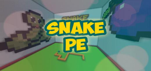 Snake PE
