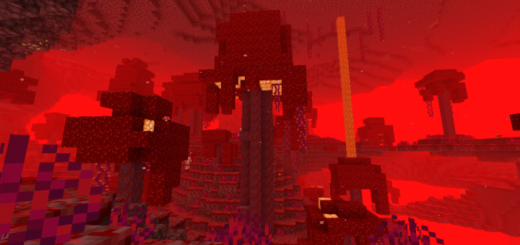 Tallest Crimson Fungus in the Nether (Seed)
