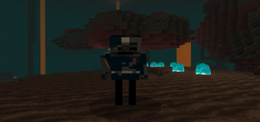 Wither Skeleton Knight Addon
